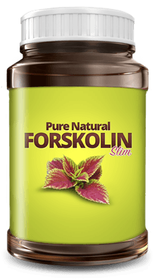pure natual forskolin extract