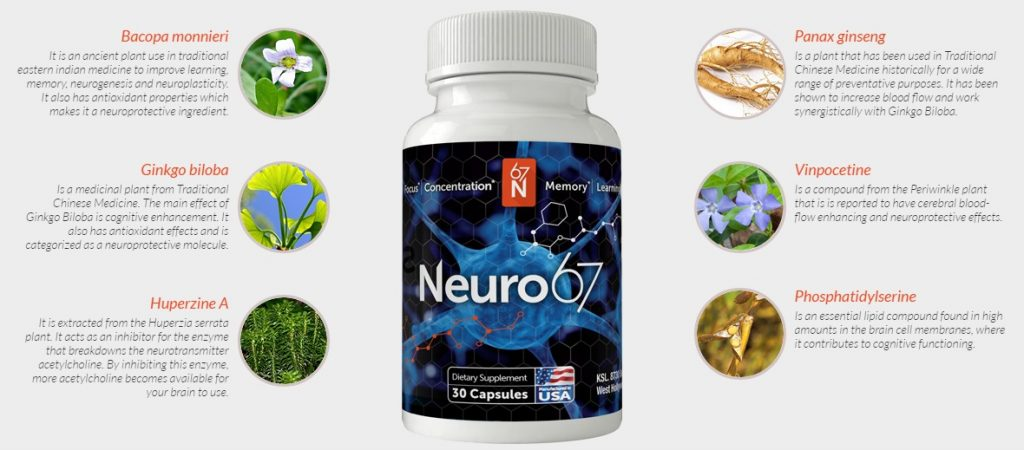 Neuro67 ingredients