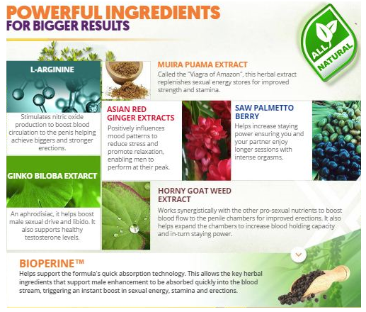 Endovex ingredients