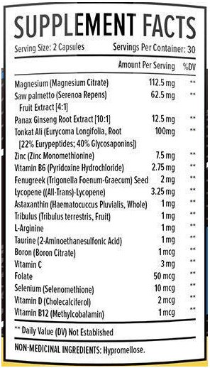 TestX Core ingredients